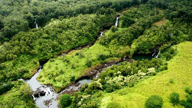 Zipline through paradise in hawaii